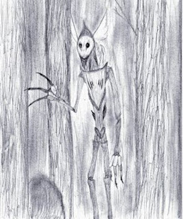 %name Hombres vegetales, hadas espaciales y otros encuentros extraterrestres realmente extraños
