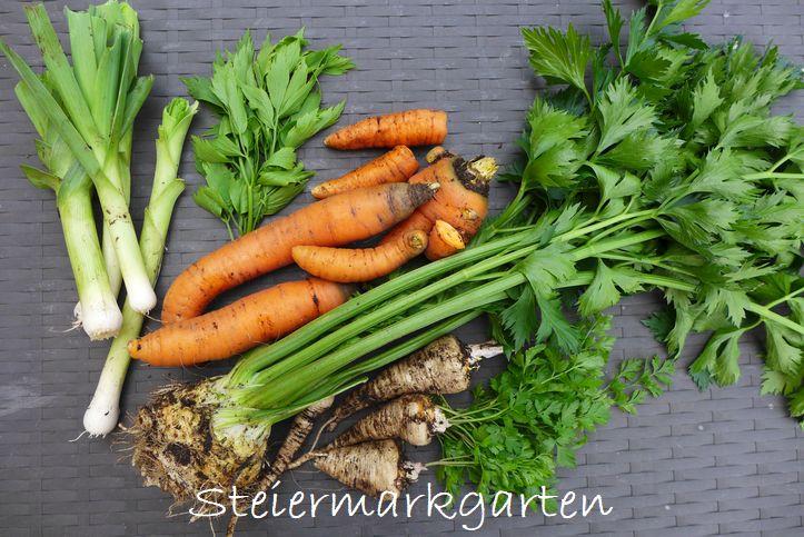 Wurzelgemüse-Steiermarkgarten