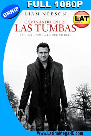 Caminando Entre las Tumbas (2014) Latino Full HD 1080P ()
