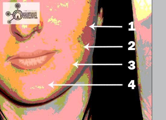 tracing wajah vector menggunakan photoshop - tutorial membuat vector di photoshop - membuat foto menjadi kartun dengan photoshop