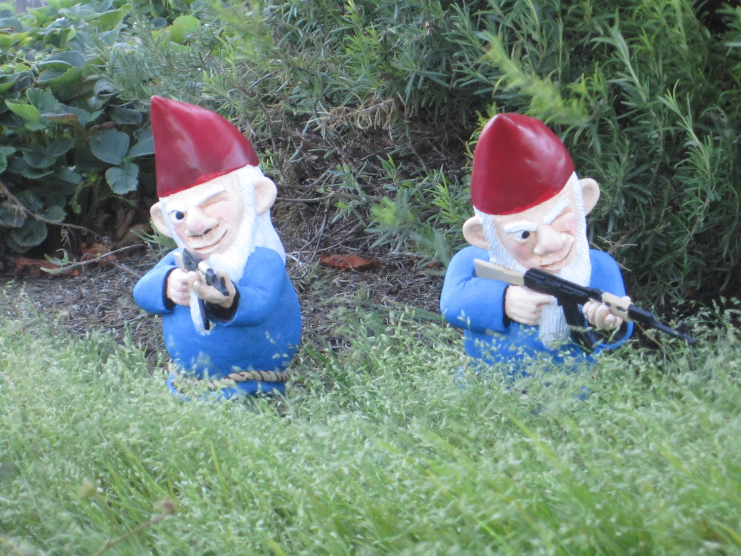 Funny Garden Gnomes: Speak Of The Devil: A Day In The Life Of A Garden Gnome
