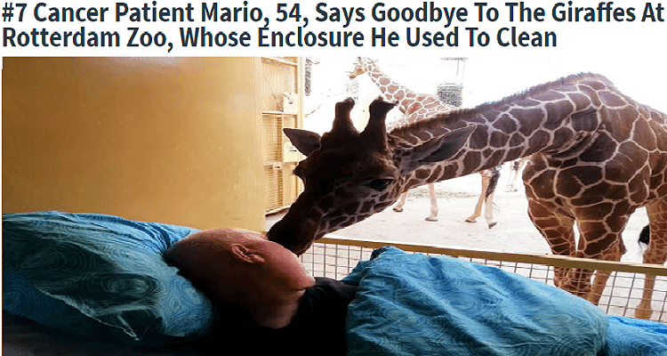 36 People's Heart-Breaking Last Wishes