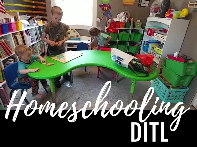 homeschool ditl
