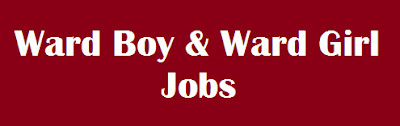 BTC Ward Boy Job