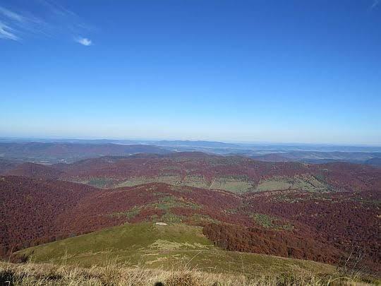 Widok na dolinę potoku Caryńskiego i Magurę Stuposiańską.