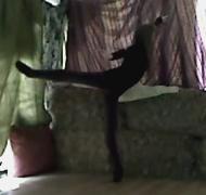 Ballerina Therese de la Fontaine on pointe in arabesque.