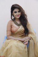 Sony Charistha in Lovely Brown Saree and Choli Spicy Pics ~  Exclusive 05.JPG