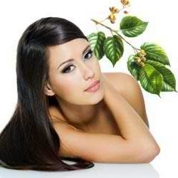 Hair Herbal Treatments and Conditioners
