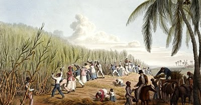 plantation economies in the caribbean The british caribbean at chapels, churches and government-sanctioned  festivals,  varied from island to island, but the plantation economy declined  overall.