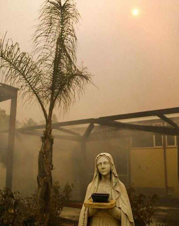 O telhado queimou mas não tocou a Nossa Senhora, Cardinal Newman High School.