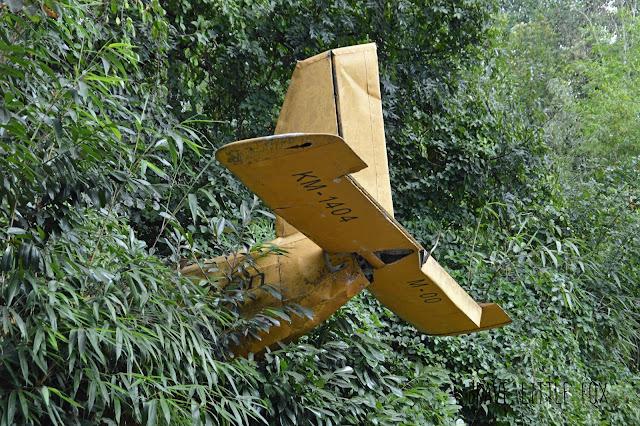 Flugzeug Erlebnis-Zoo Hannover