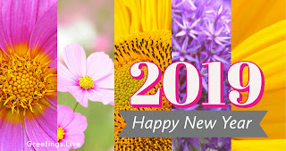 New Year 2019 Images 4k Quality from greetings Live