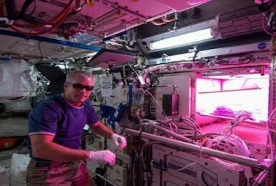 Untuk memenuhi kebutuhan pangan astronot bertani di angkasa