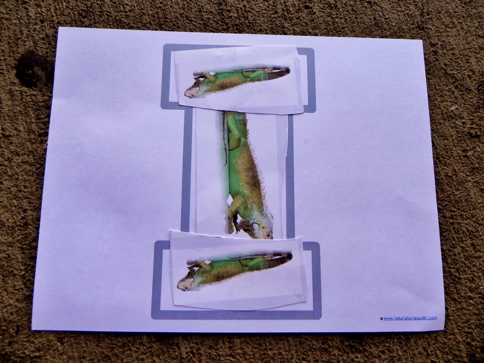 The Fantastic Five Animal Abcs Letter I