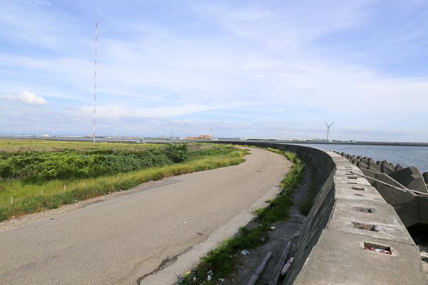 彰化線西濱海橋渡船頭成為網美IG打卡熱點、八支水劍吹海風看海去