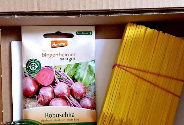 Organic red beet seeds and yellow plant markers Økologiske rødbetefrø og gule planteetiketter