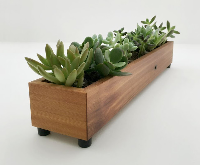 Reclaimed Wood Window Succulent Planter