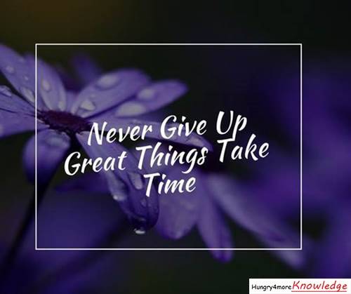 Never-Give-Up-Great-Things-Take-Time