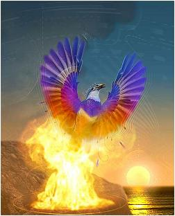 As I Went Walking Today I Am Like A Phoenix Rising