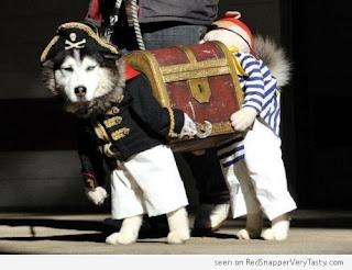 Perros disfrazados muy simpaticos.