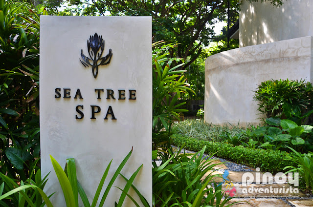 Tea Tree Spa in Amorita Resort Bohol
