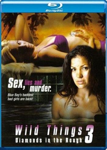 Wild Things 3 2005 Dual Audio Hindi 480p BRRip 300mb