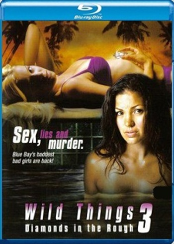 Wild Things 3 2005 Dual Audio Hindi Bluray Download