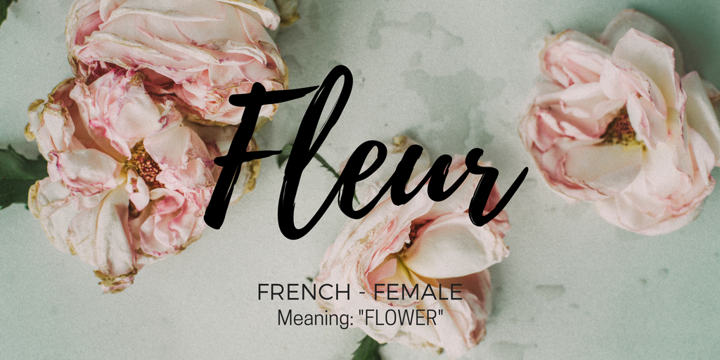 "background of pink flowers with writing ""Fleur, french - female, meaning flower"