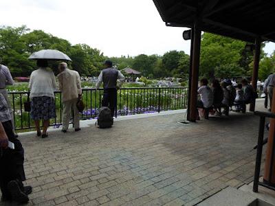 城北菖蒲園のあずまや