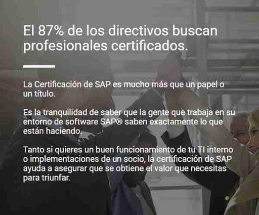 Máster SAP - consultoria-sap.com
