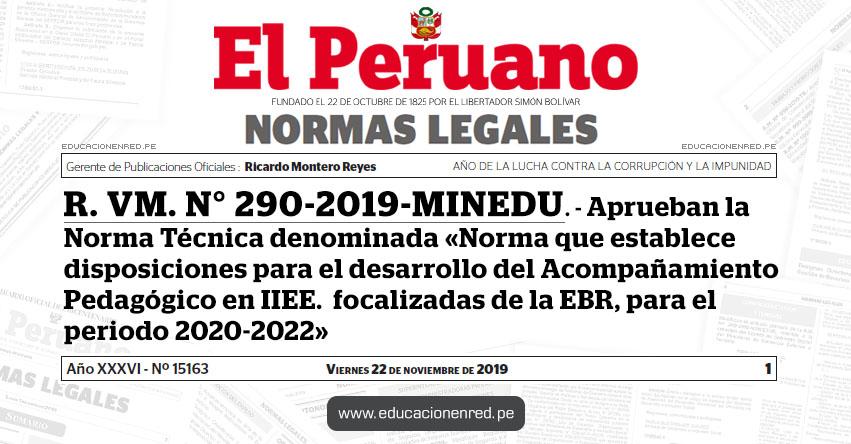 R. VM. N° 290-2019-MINEDU - Aprueban la Norma Técnica denominada «Norma que establece disposiciones para el desarrollo del Acompañamiento Pedagógico en instituciones educativas focalizadas de la Educación Básica Regular, para el periodo 2020-2022»