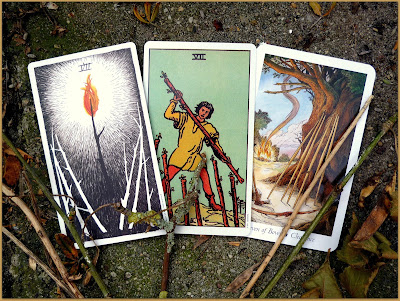 Seven of Wands Original Rider Waite Tarot, The Wild Unknown Tarot, Wildwood Tarot