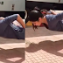 Katrina Kaif's push-ups without using her hands will make you jaw dropped!