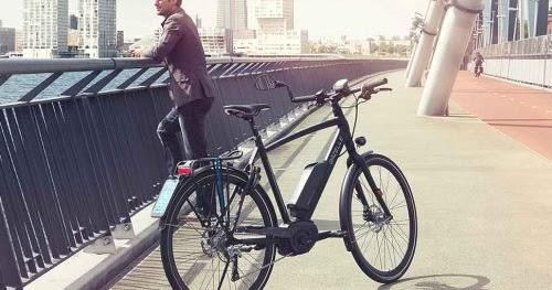 ad fietstest gazelle cityzen beste koop bij test speed. Black Bedroom Furniture Sets. Home Design Ideas