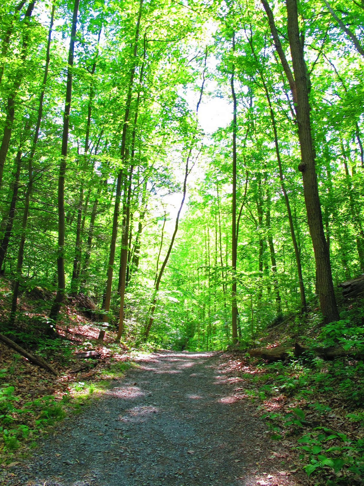 Best Nature Hikes Near Me