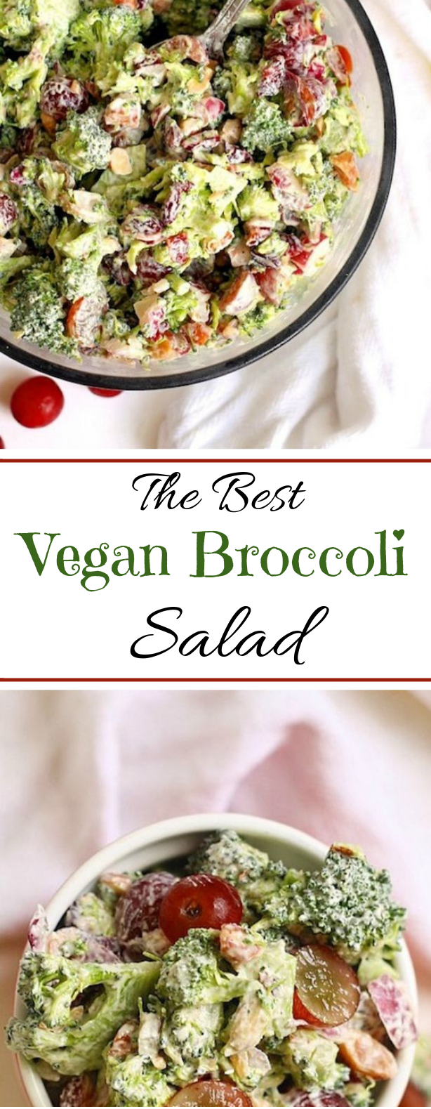 The Best Vegan Broccoli Salad #vegetarian #salad