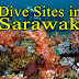 Dive Sites in Sarawak
