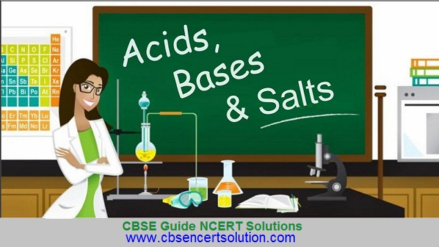 CBSE Guide NCERT Solution - image