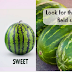 5 Tips To Pick The Sweetest Watermelon