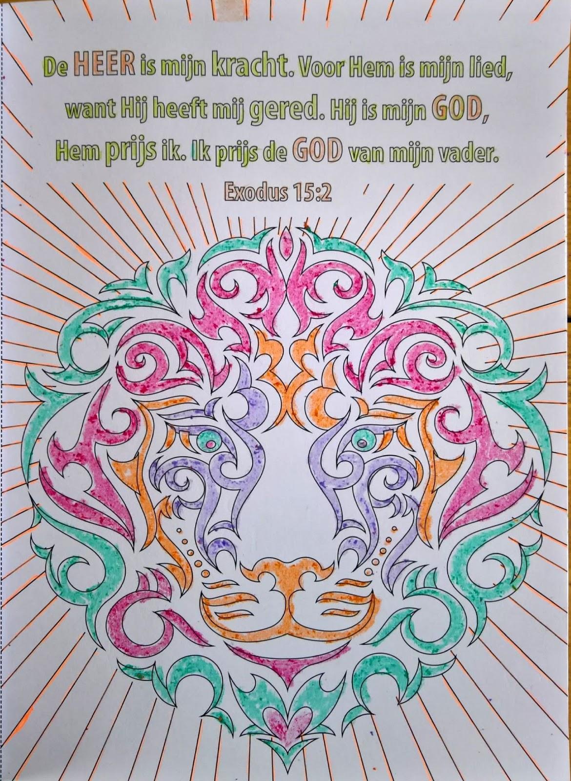 Kleurplaten Leeuwenkop.Als Het Leven Kwetsbaar Imperfect Typisch Autistisch