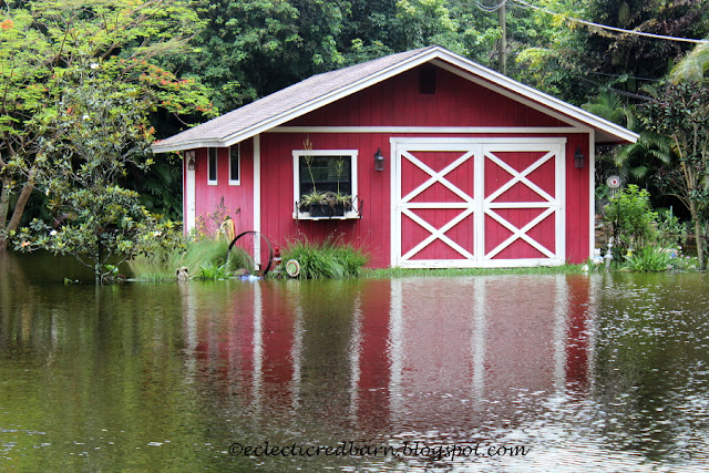 Eclectic Red Barn: Barn after rain
