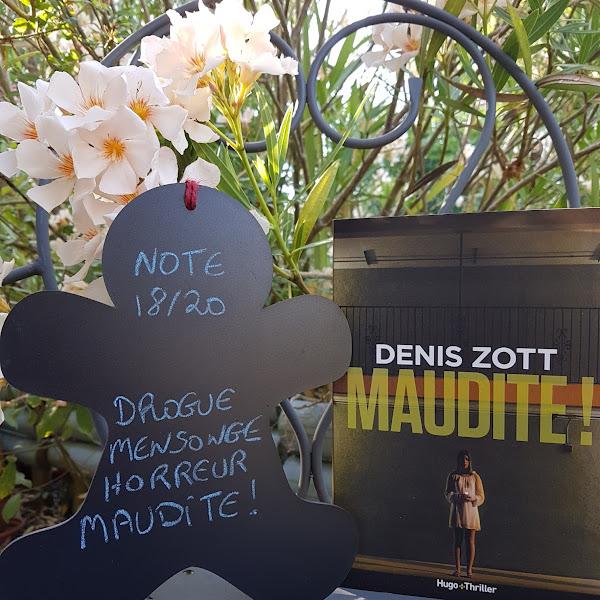 Maudite ! de Denis Zott
