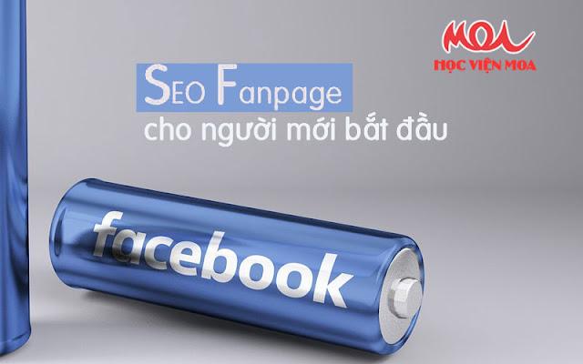 Làm sao để SEO Fanpage cho người mới bắt đầu?