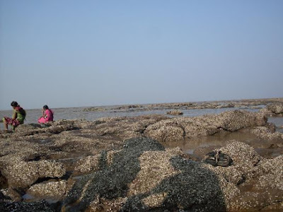 Daman Sea Beach