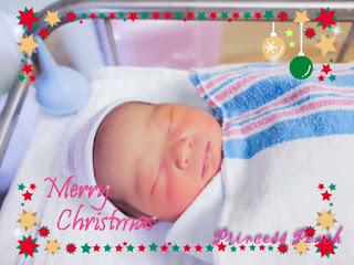 茉莉出生啦