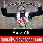 http://www.humaliwalayazadar.com/2015/11/raiz-ali-nohay-2016.html