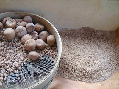 Παραδοσιακά φαγητά & γλυκά Μάκρης και Λιβισίου Λυκίας Μ. Ασίας