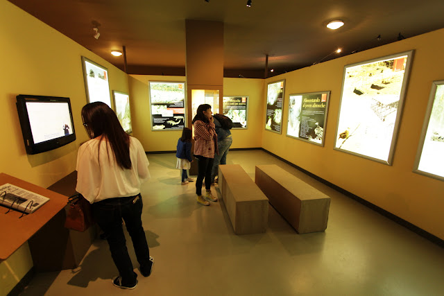 Centro Cultural Félix Rodríguez de la Fuente en Poza de la Sal