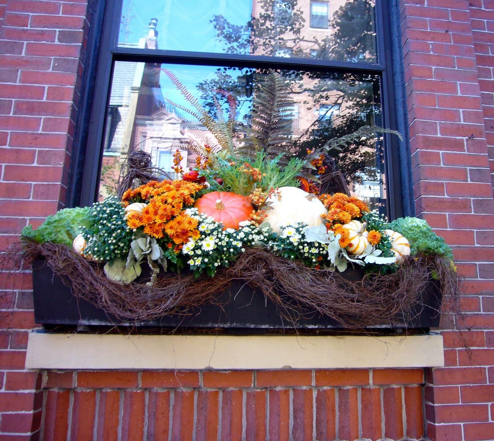 Fall Window Box: A Proper Bostonian: Harvest On Fairfield
