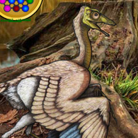 Wowescape Archaeopteryx Bird Forest Escape